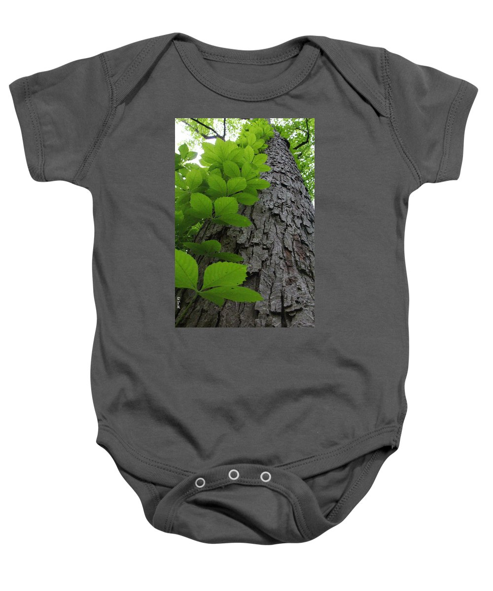Leafy Ladder Baby Onesie featuring the photograph Leafy Ladder by Ed Smith