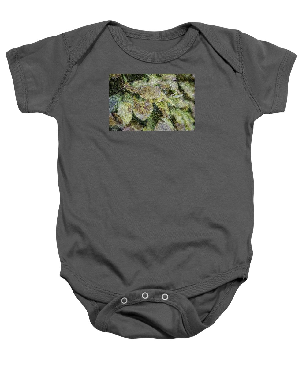Abstract Baby Onesie featuring the photograph Leaves And Moss by Wendy Chapman