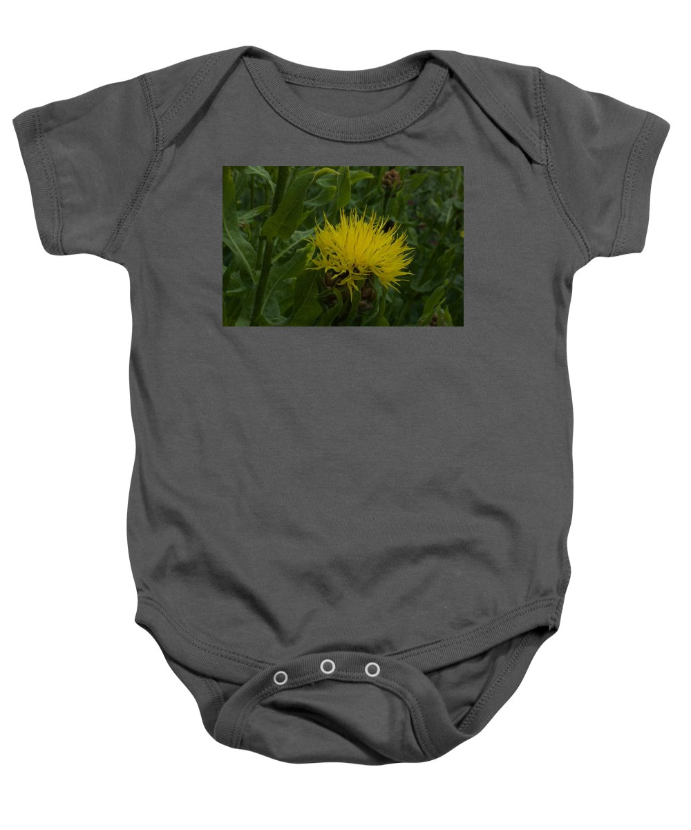 Flower Baby Onesie featuring the photograph Lemon Fluff by David Lyon