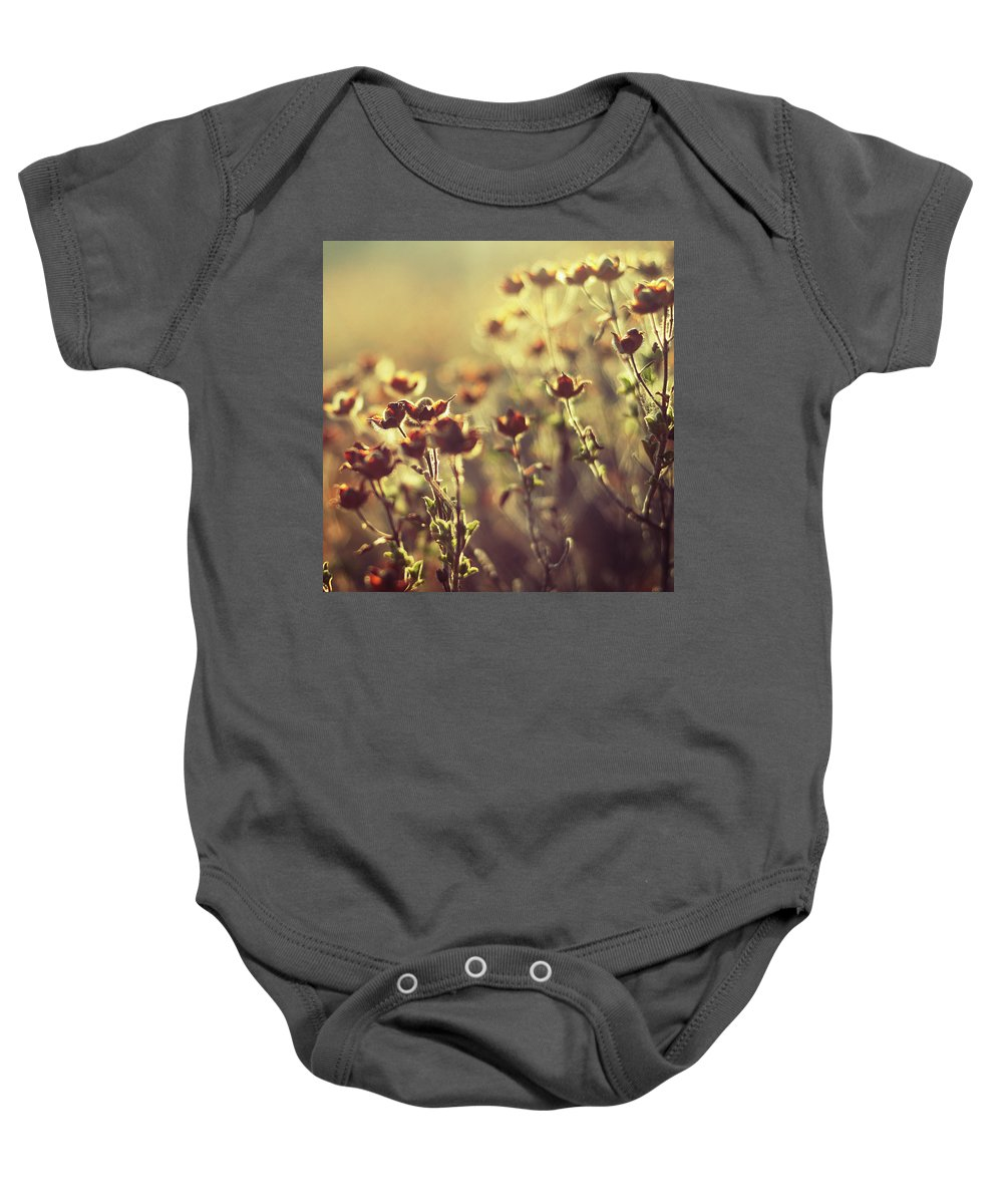 Wild Flowers Baby Onesie featuring the photograph Les Larmes Dautomne by Zapista Zapista