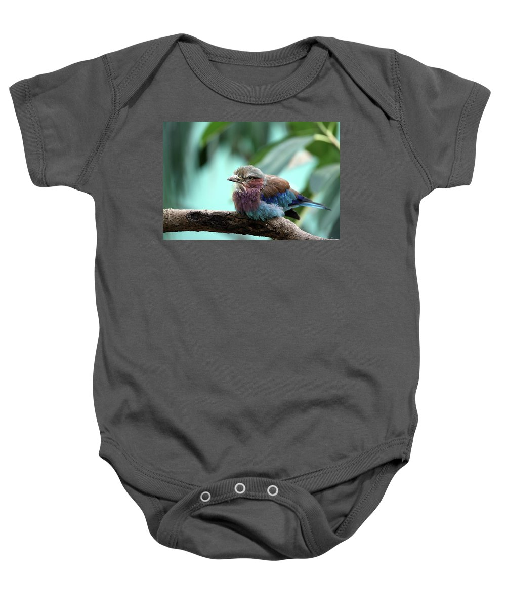 Bird Baby Onesie featuring the photograph Lilac Breasted Roller by Karol Livote