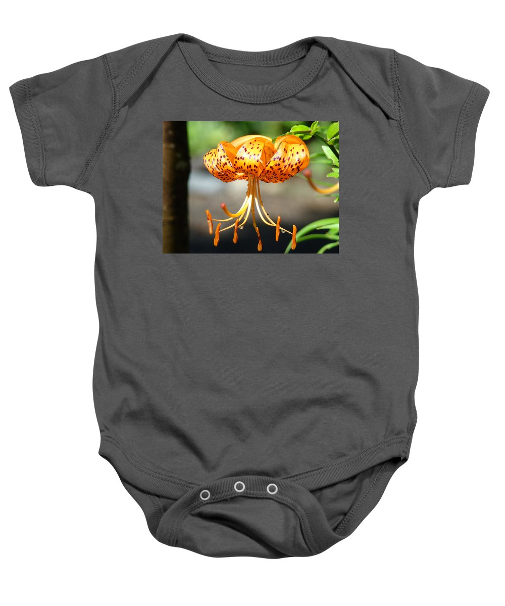 Lilies Baby Onesie featuring the photograph Lily Flowers Art Orange Tiger Lilies Giclee Baslee Troutman by Baslee Troutman
