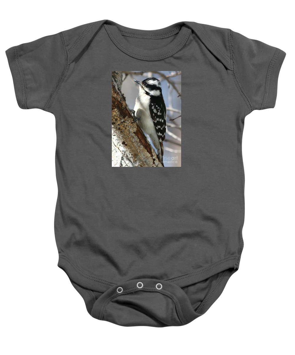 Downy Woodpecker Baby Onesie featuring the photograph Little Downy Sweetness by Angela Koehler