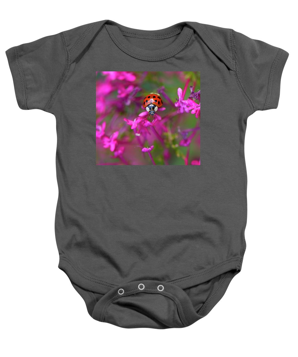 Bug Baby Onesie featuring the photograph Little Lady by Shelley Neff