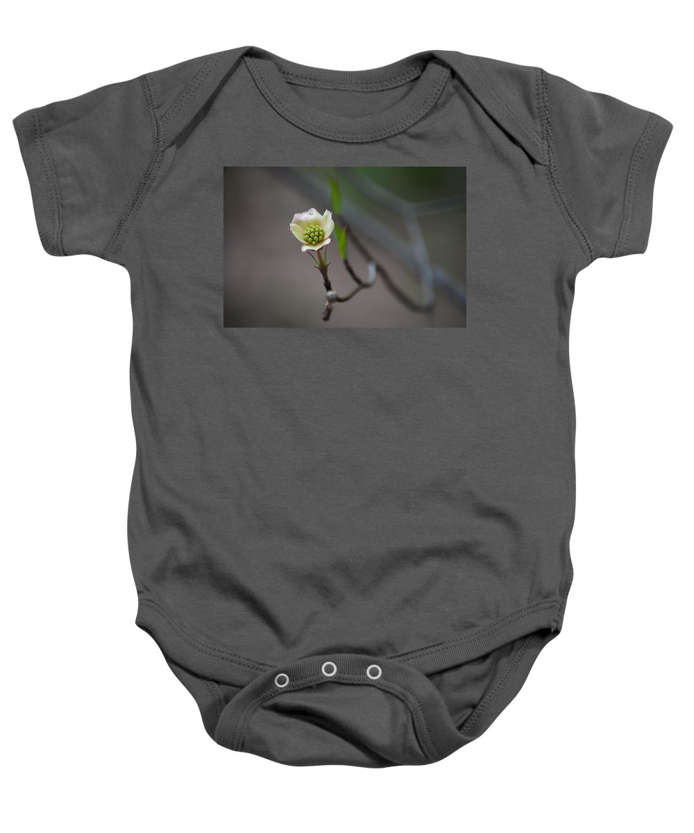 Plant Baby Onesie featuring the photograph Little Sprout by Trish Tritz