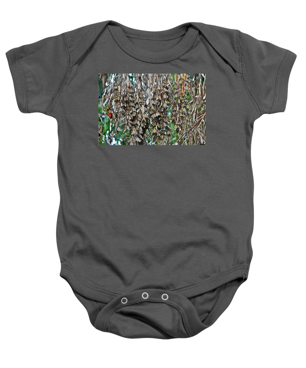 Butterfly Baby Onesie featuring the photograph Look Closely by Diana Hatcher
