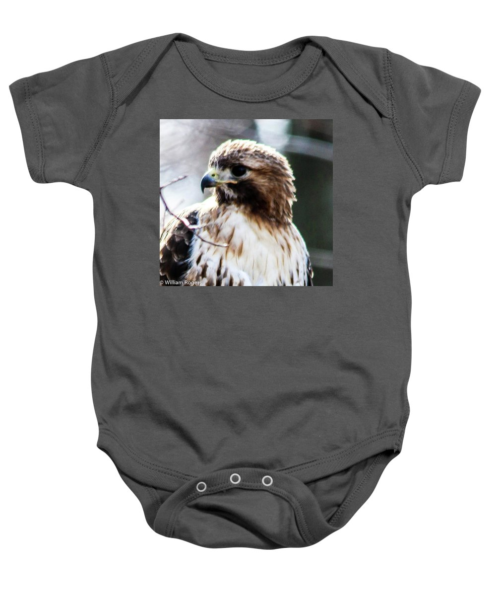 This Is Going Is Photo Of A Red Tail Hawk Sitting In A Tree Right Next To Me On Garrett Mountain New Jersey. Baby Onesie featuring the photograph Looking Good by William Rogers