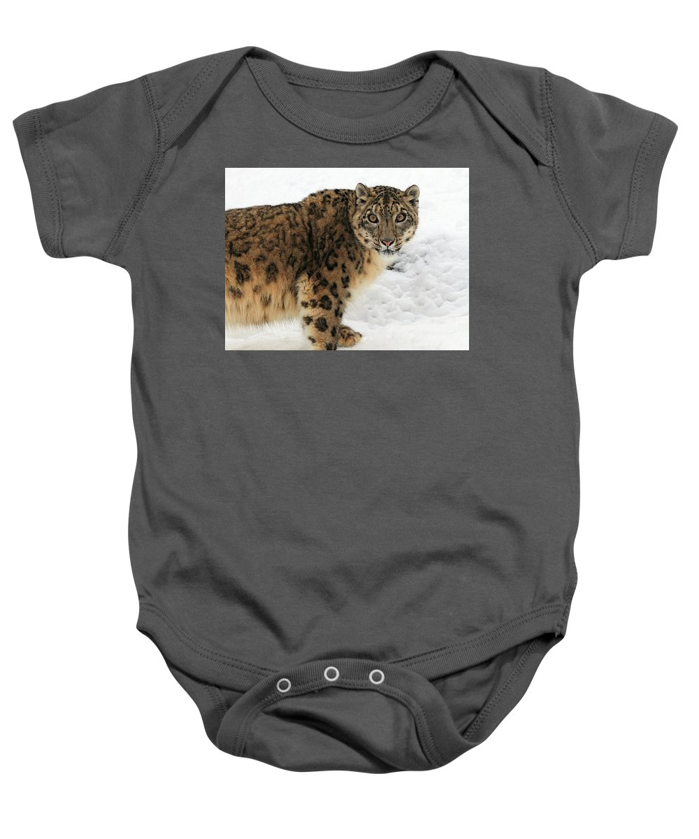 Amur Leopard Baby Onesie featuring the photograph Looking Into Your Soul by Dan Orr