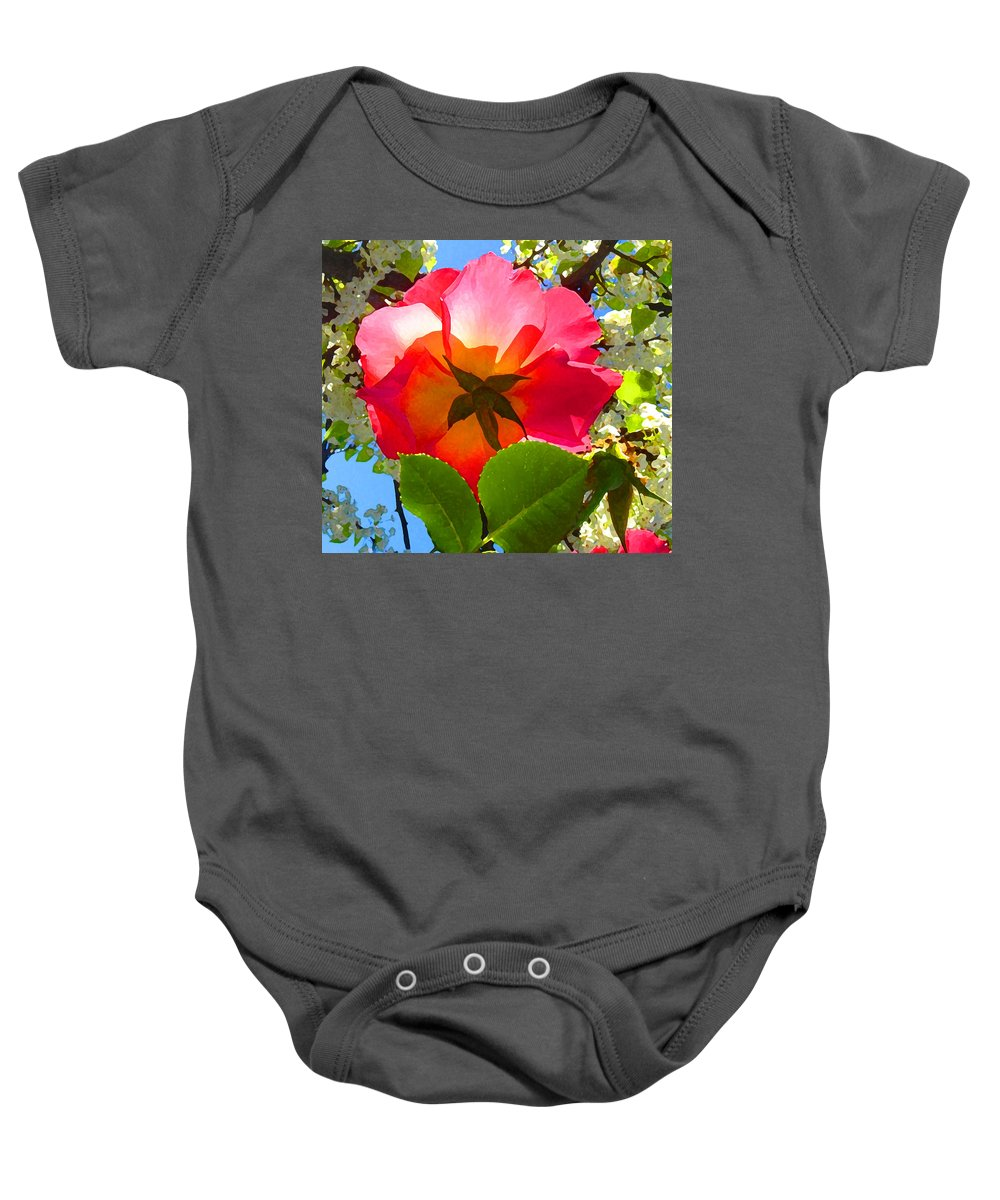 Roses Baby Onesie featuring the photograph Looking Up At Rose And Tree by Amy Vangsgard