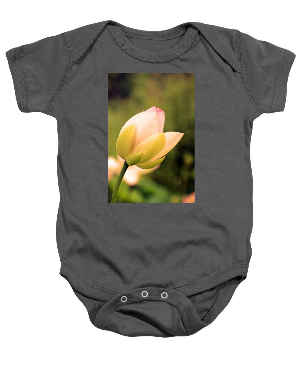 Lotus Baby Onesie featuring the photograph Lotus 1270 by Carolyn Stagger Cokley