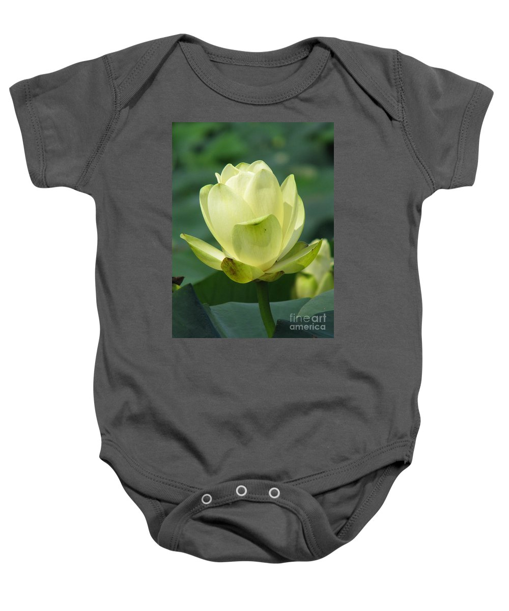 Lotus Baby Onesie featuring the photograph Lotus by Amanda Barcon