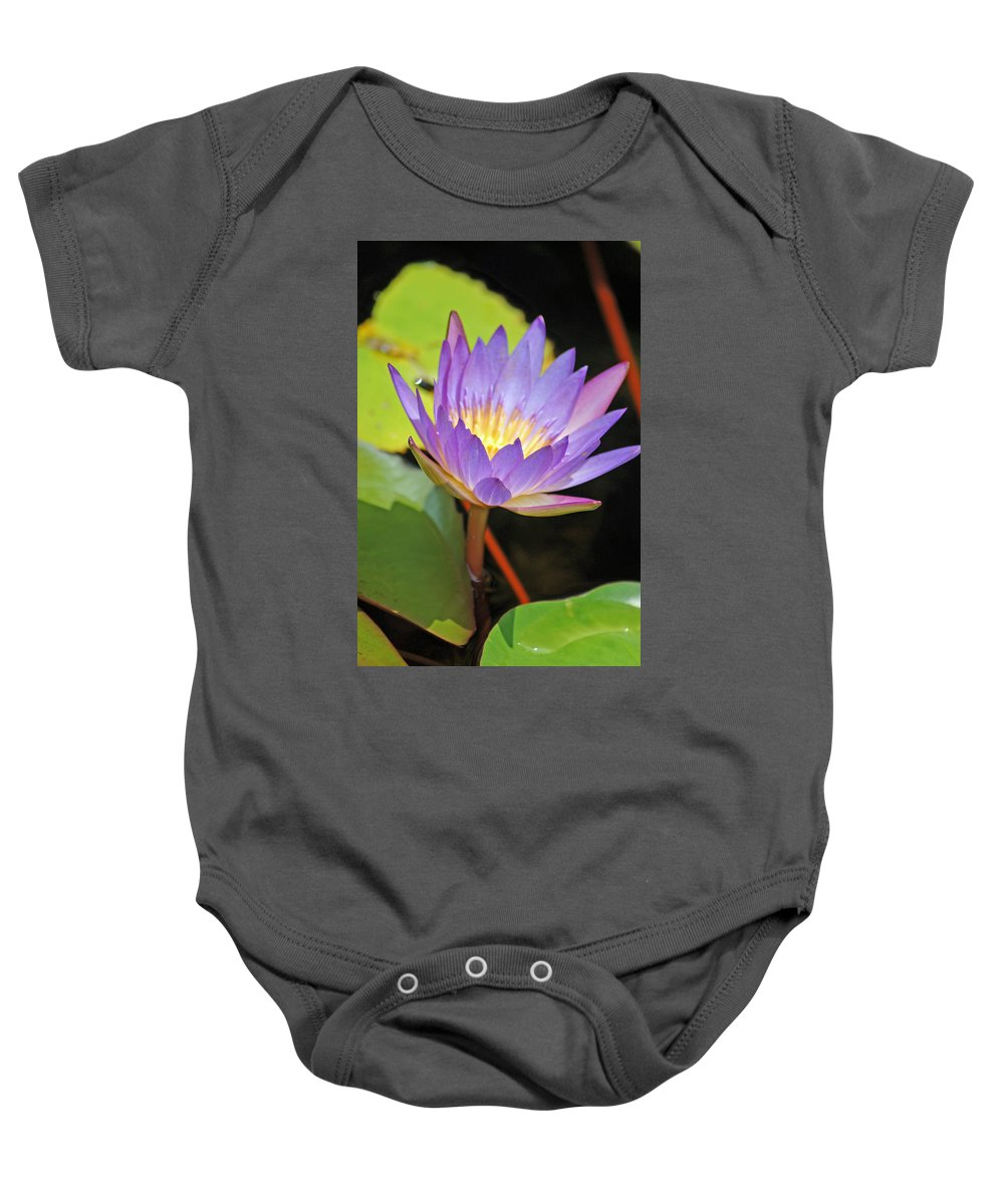 Lotus Flower Baby Onesie featuring the photograph Lotus Flower by Donna Bentley