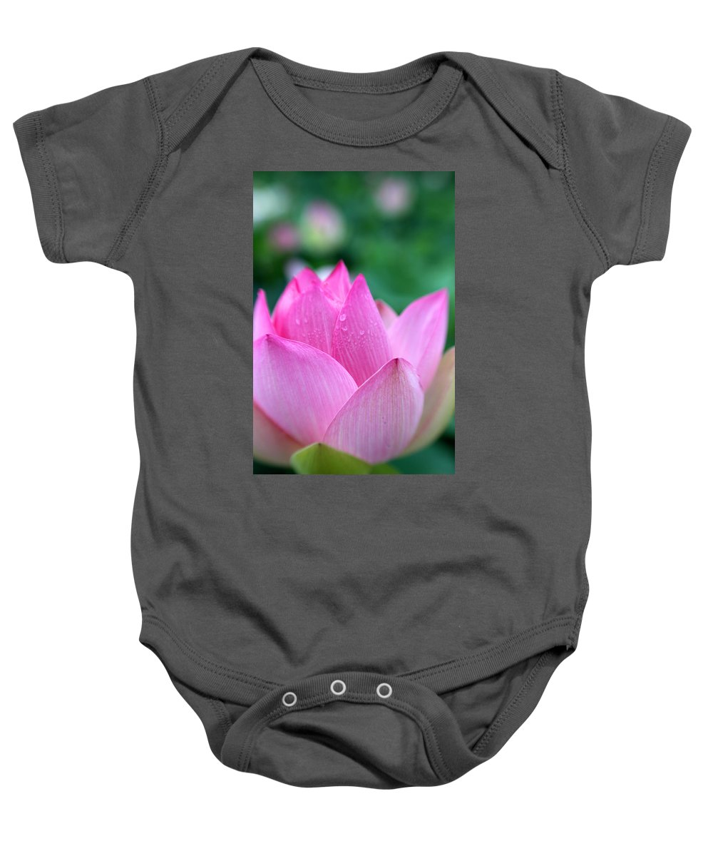 Lotus Baby Onesie featuring the photograph Lotus In Pink by Carolyn Stagger Cokley