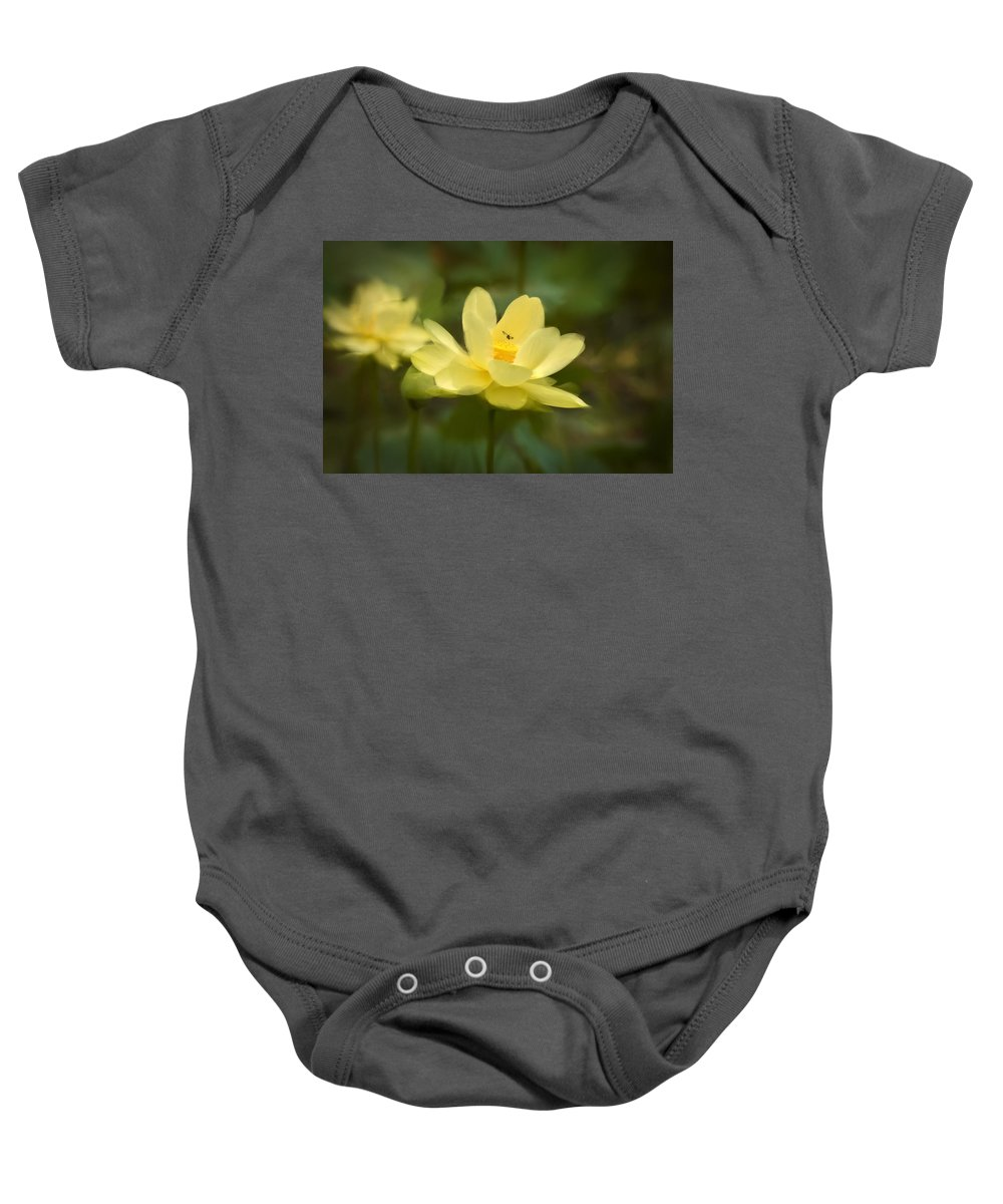 Lotus Baby Onesie featuring the painting Lotus With Bee by Rich Leighton