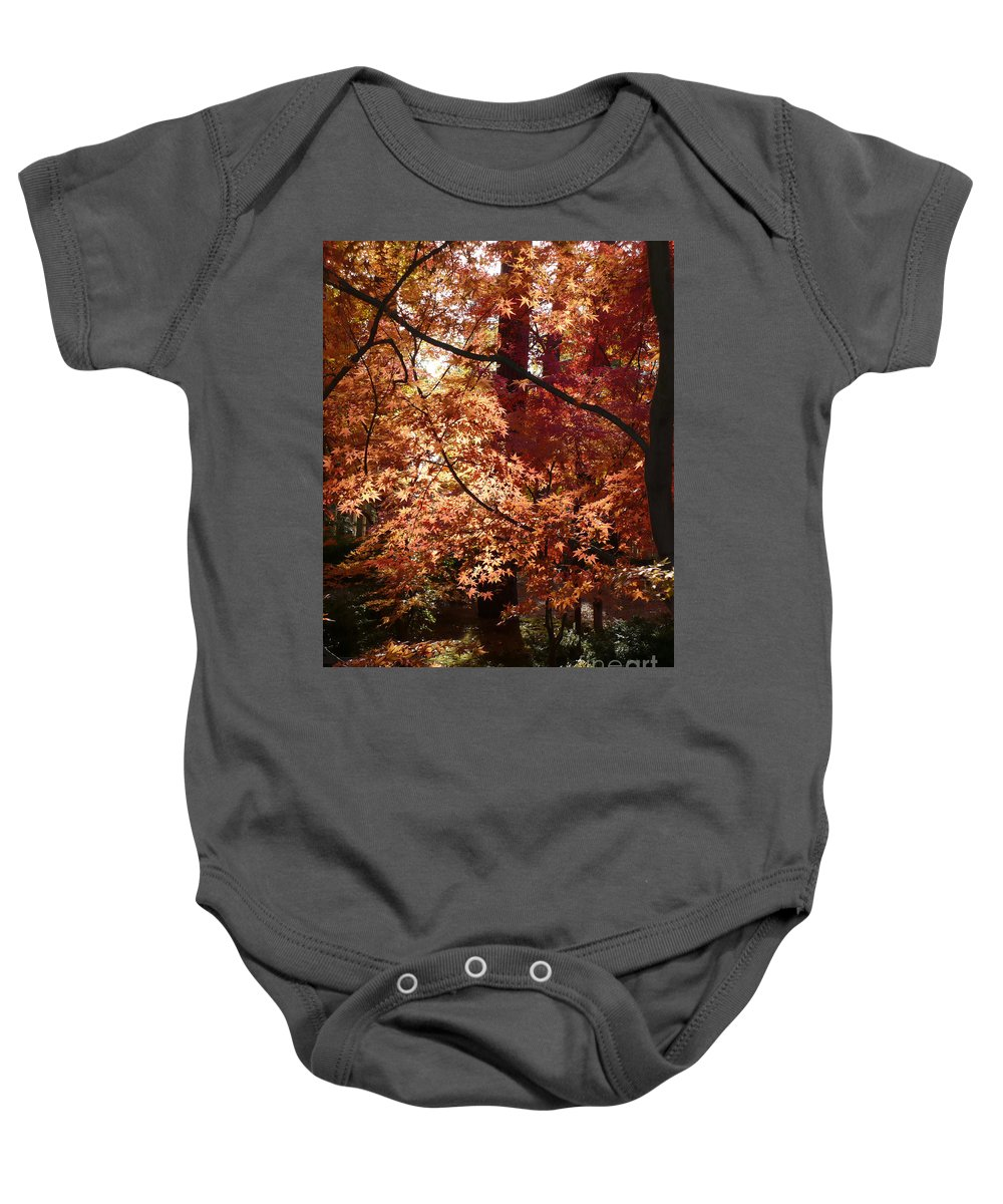 Fall Landscape Photograph Baby Onesie featuring the photograph Lovely Autumn Tree by Carol Groenen
