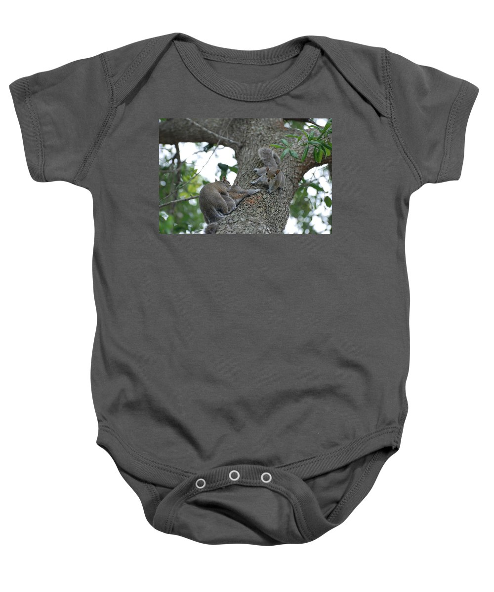 Squirrel Baby Onesie featuring the photograph Luck Be A Lady by Rob Hans