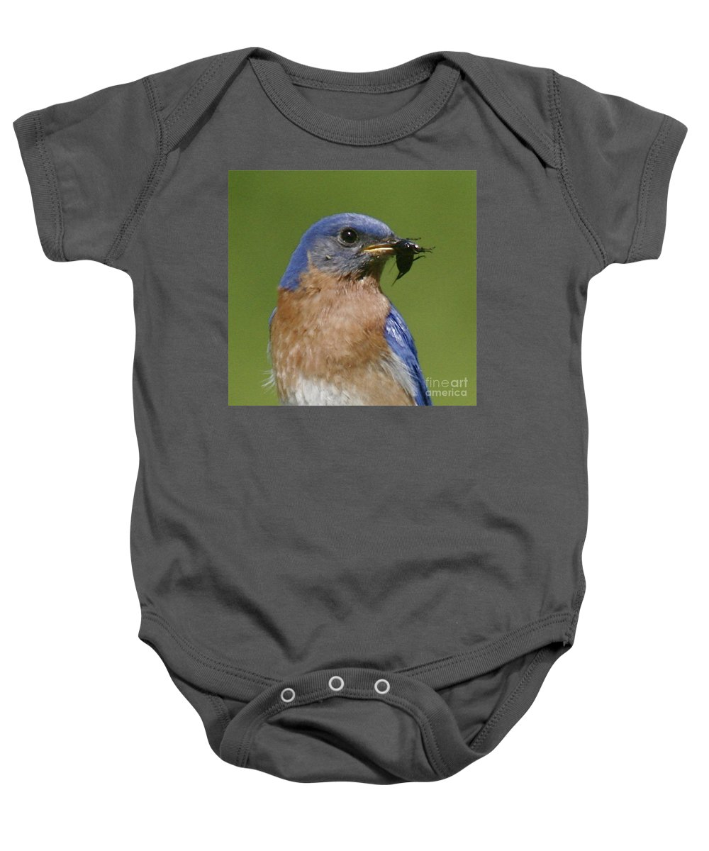 Blue Bird Baby Onesie featuring the photograph Lunch Time Blues by Robert Pearson