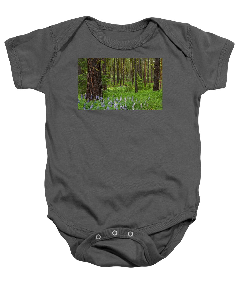 Forest Baby Onesie featuring the photograph Lupine Carpet by Mike Dawson