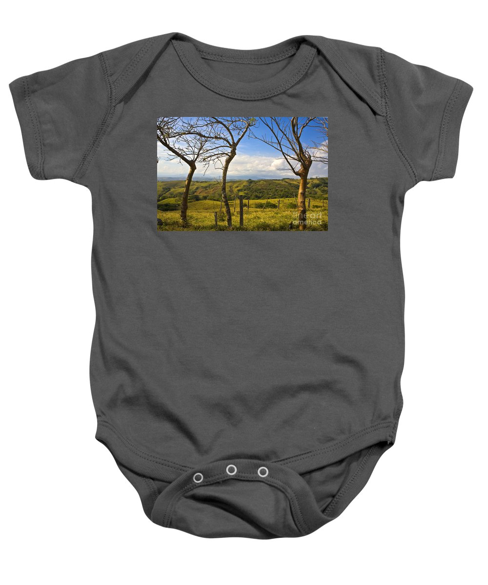 Tree Baby Onesie featuring the photograph Lush Land Leafless Trees I by Madeline Ellis
