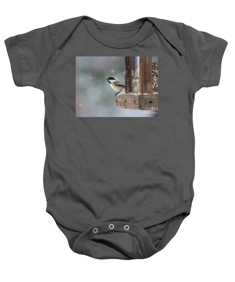 Maine Baby Onesie featuring the photograph Maine Chickadee by Alison Berube