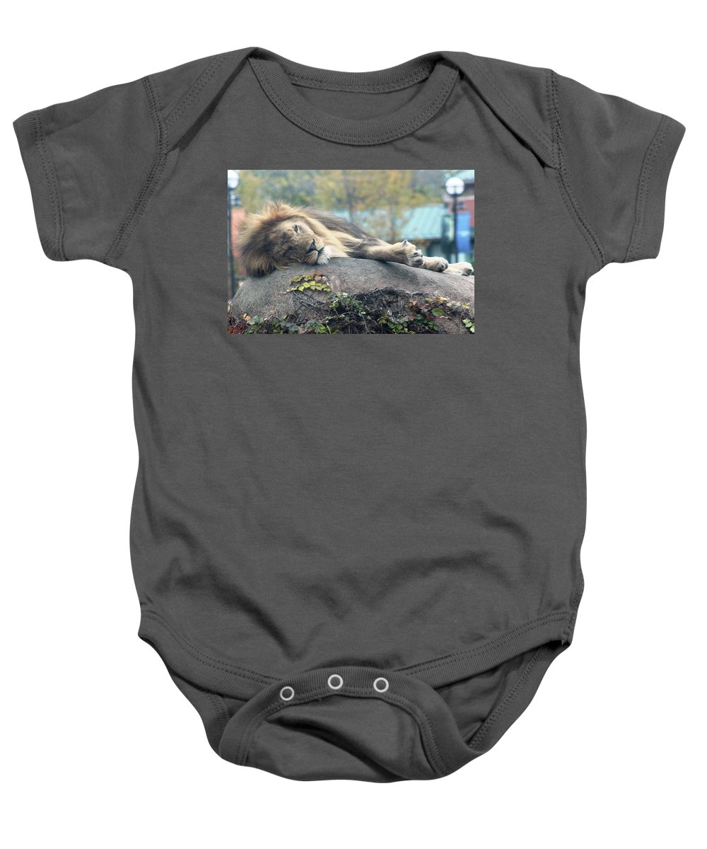 Baby Onesie featuring the photograph Male Lion by Rocky Washington