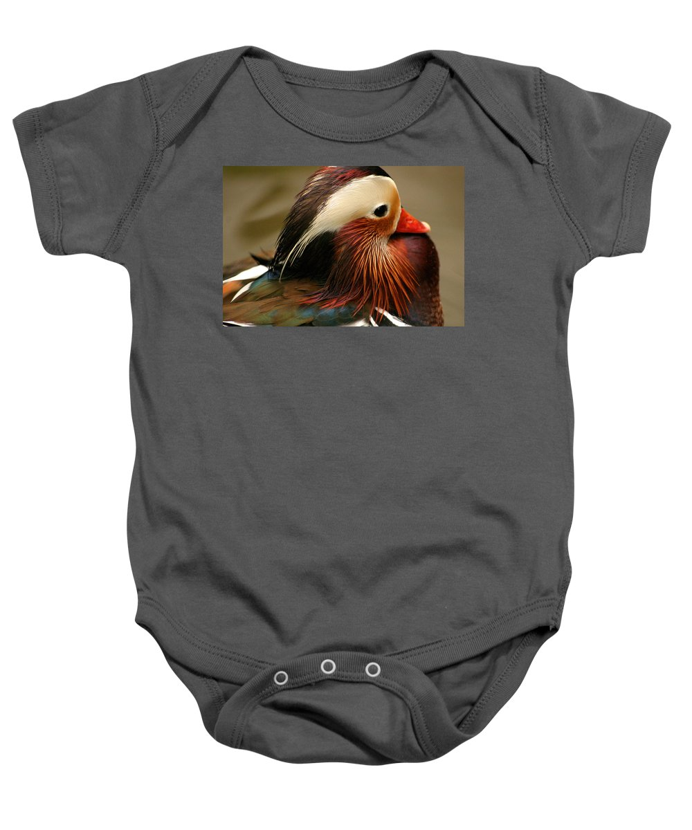Mandarin Duck Baby Onesie featuring the photograph Male Mandarin Duck China by Ralph A Ledergerber-Photography