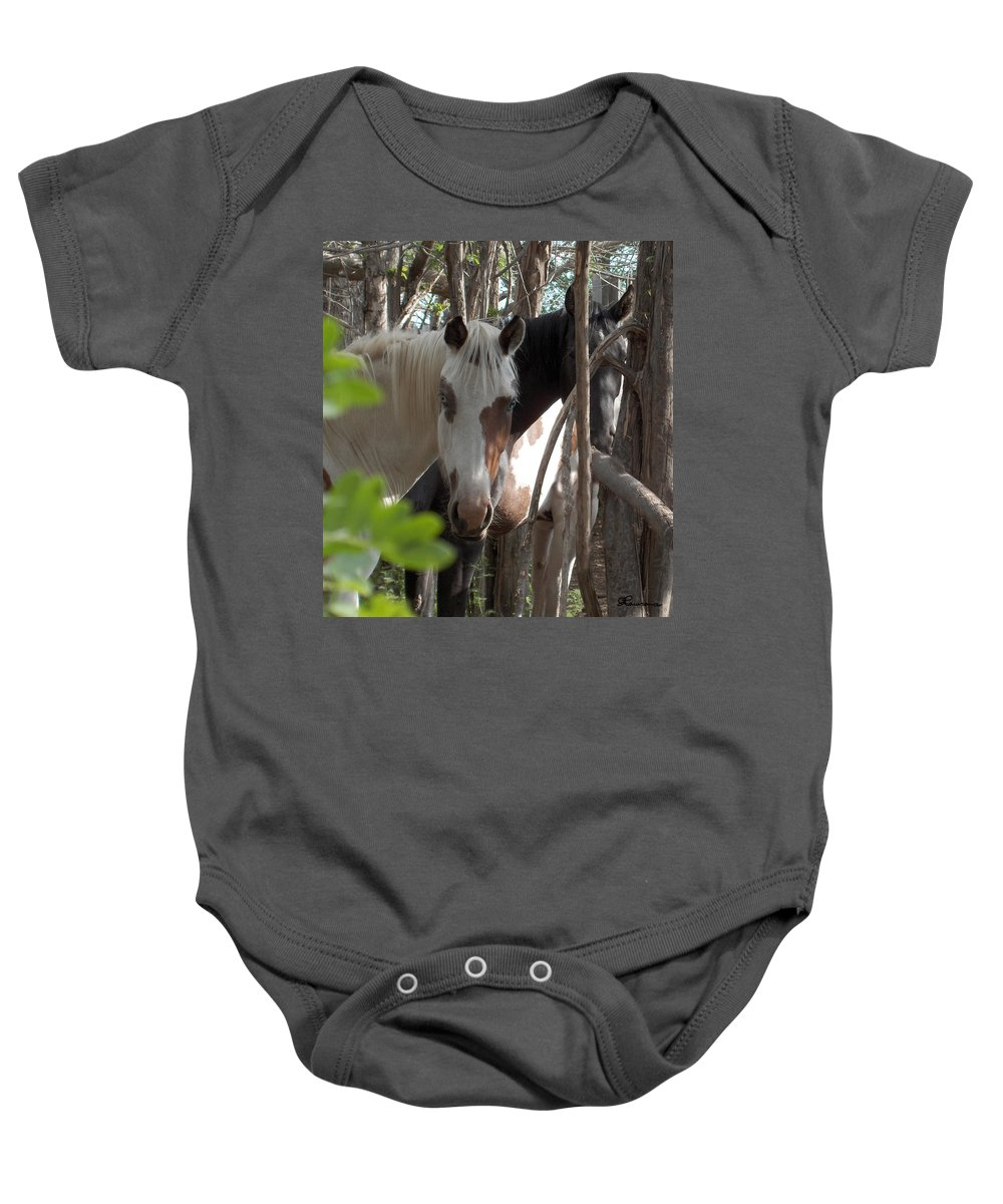 Horses Herd Mares Trees Ranch Farm Acreage Baby Onesie featuring the photograph Mares In Trees by Andrea Lawrence