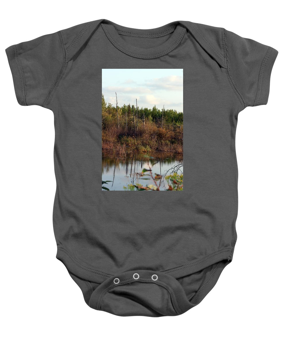 Marsh Lake Water Aquatic Wild Natural Mother Nature Pond Baby Onesie featuring the photograph Marsh by Andrea Lawrence