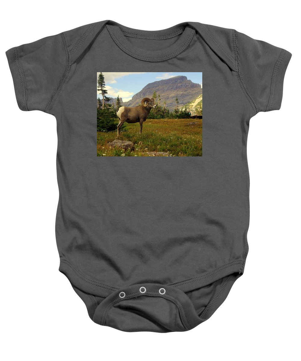 Big Horn Sheep Baby Onesie featuring the photograph Master Of His Domain by Marty Koch