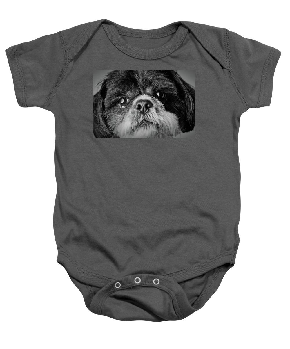 Shih Tzu Dog Baby Onesie featuring the photograph Max - A Shih Tzu Portrait by Onyonet Photo Studios