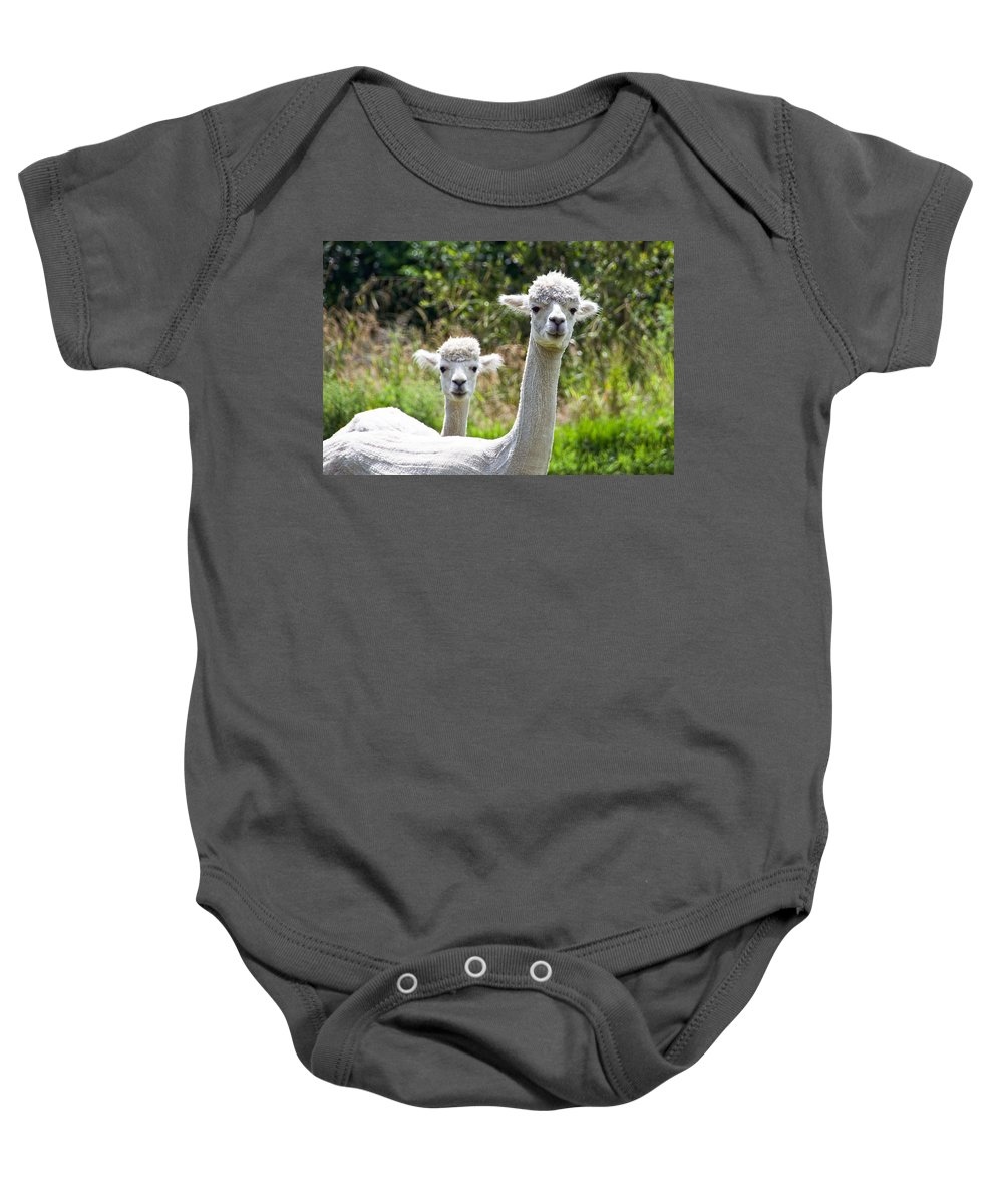 Alpaca Baby Onesie featuring the photograph Me And My Sidekick by Susie Peek