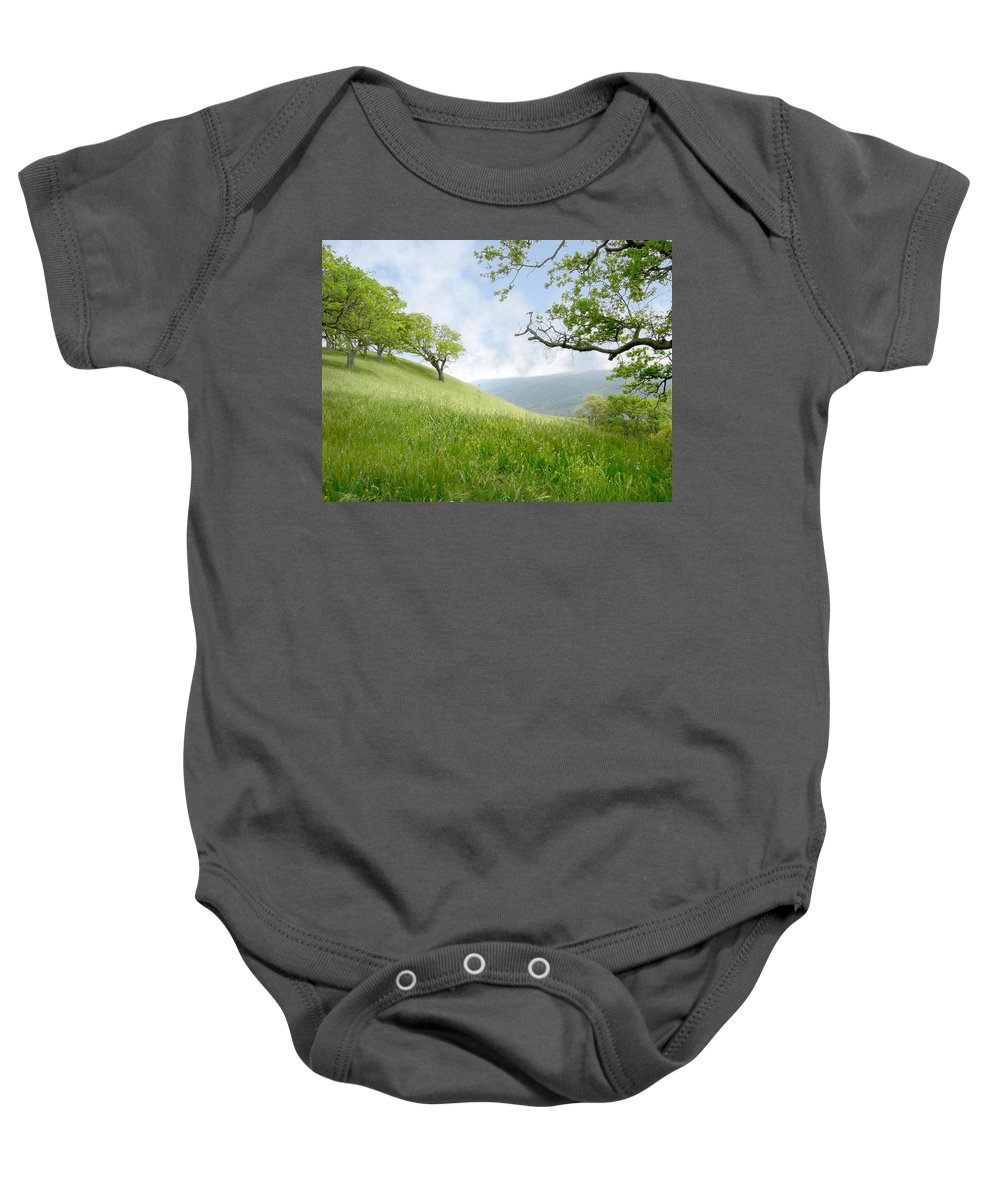 Landscape Baby Onesie featuring the photograph Meadow View Spring by Karen W Meyer