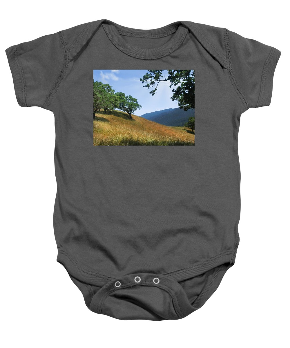 Landscape Baby Onesie featuring the photograph Meadow View Summer by Karen W Meyer