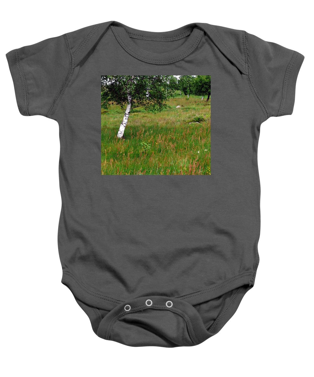 Landscape Baby Onesie featuring the photograph Meadow With Birch Trees by Valerie Ornstein