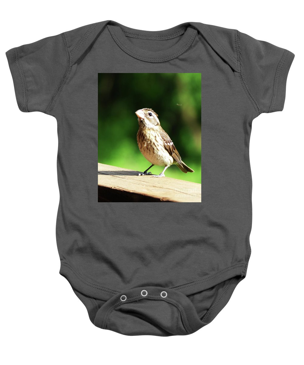 Bird Baby Onesie featuring the photograph Midwest Bird Portrait by Paula Joy Welter