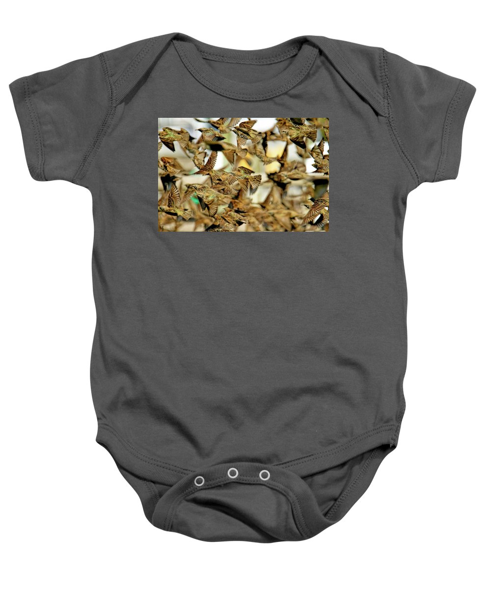 Recent Baby Onesie featuring the photograph Migration Of The Starlings by Geraldine Scull