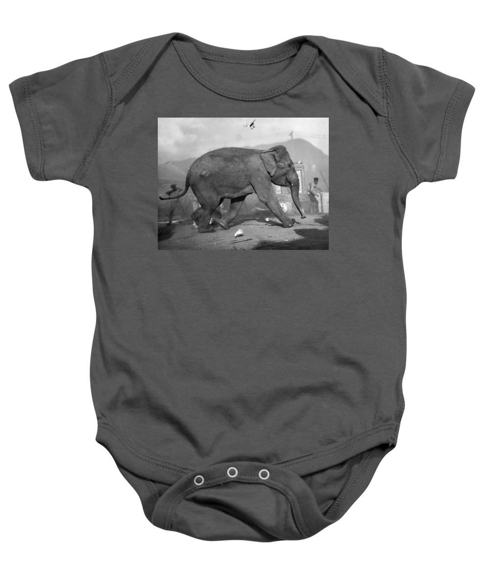 1920 Baby Onesie featuring the photograph Minnie The Elephant, 1920s by Granger