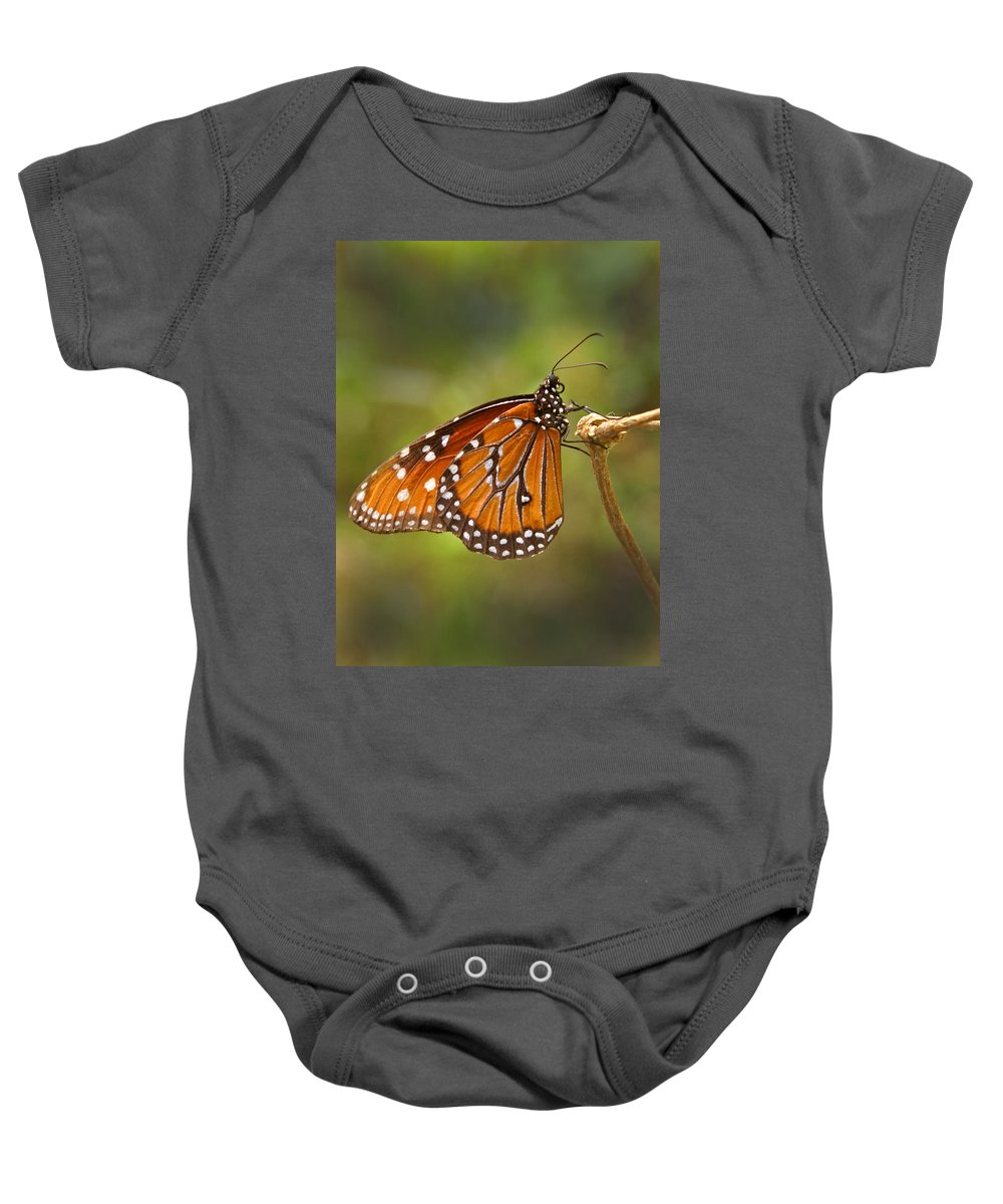 Monarch Baby Onesie featuring the photograph Monarch Butterfly by Heather Coen