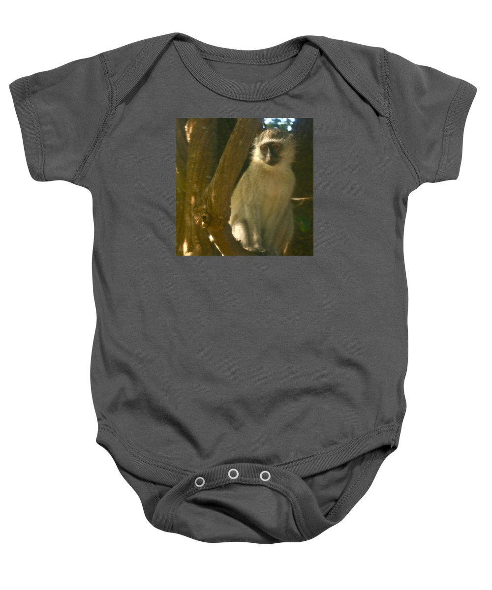 Karen Zuk Rosenblatt Art And Photography Baby Onesie featuring the photograph Monkey In The Tree by Karen Zuk Rosenblatt