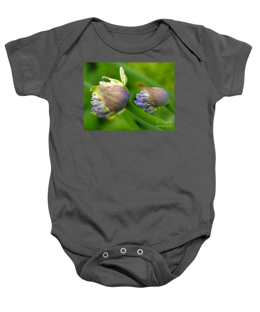 Blue Baby Onesie featuring the photograph Montana Blue by Diane Greco-Lesser