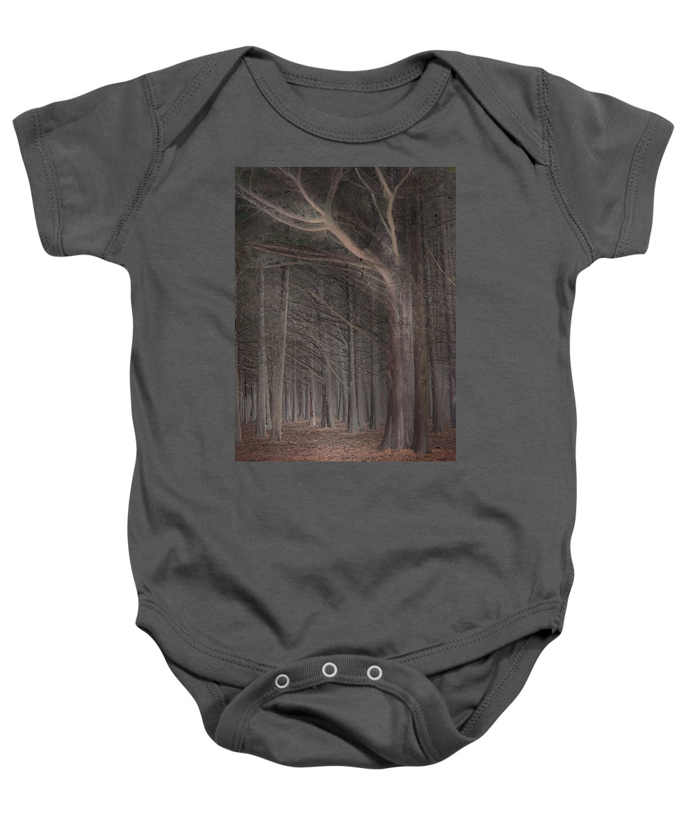 Landscapes Baby Onesie featuring the photograph Moss Beach Trees by Karen W Meyer