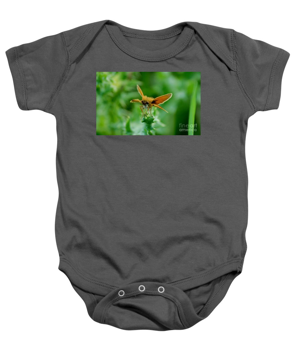 Landscape Baby Onesie featuring the photograph Mothera by David Lane