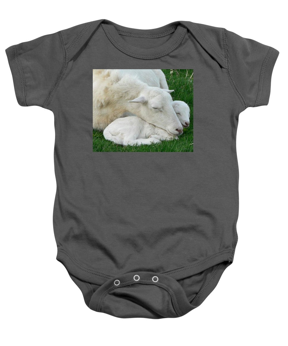 Sheep Baby Onesie featuring the photograph Mother's First Love by Melissa Haney