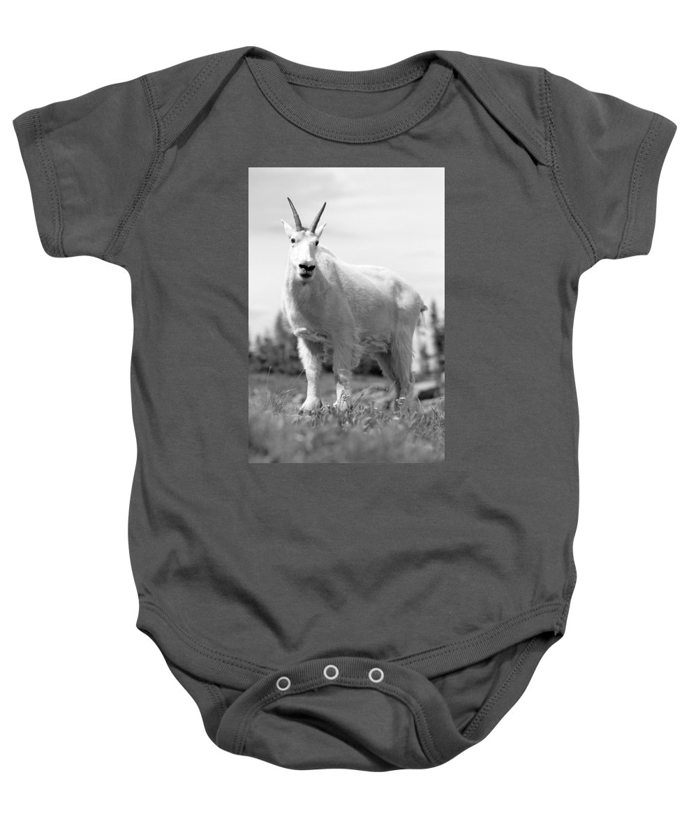Mountain Goat Baby Onesie featuring the photograph Mountain Goat by Sebastian Musial