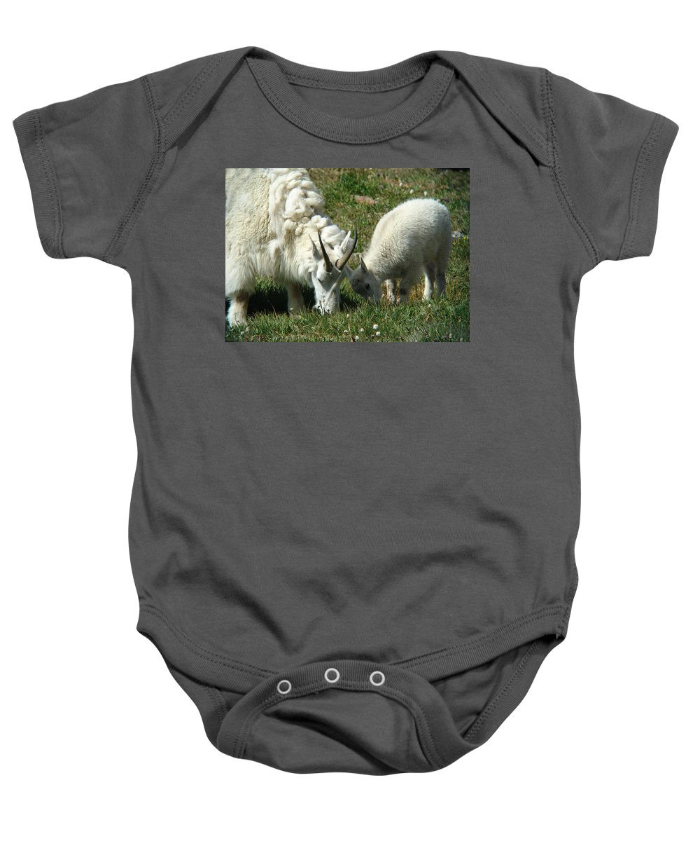 Goats Baby Onesie featuring the photograph Mountain Goats by Carol Milisen