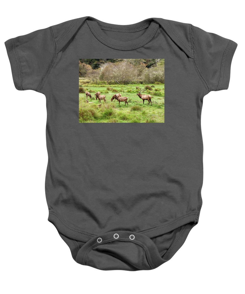 Animal Baby Onesie featuring the photograph Move Along Now by John M Bailey