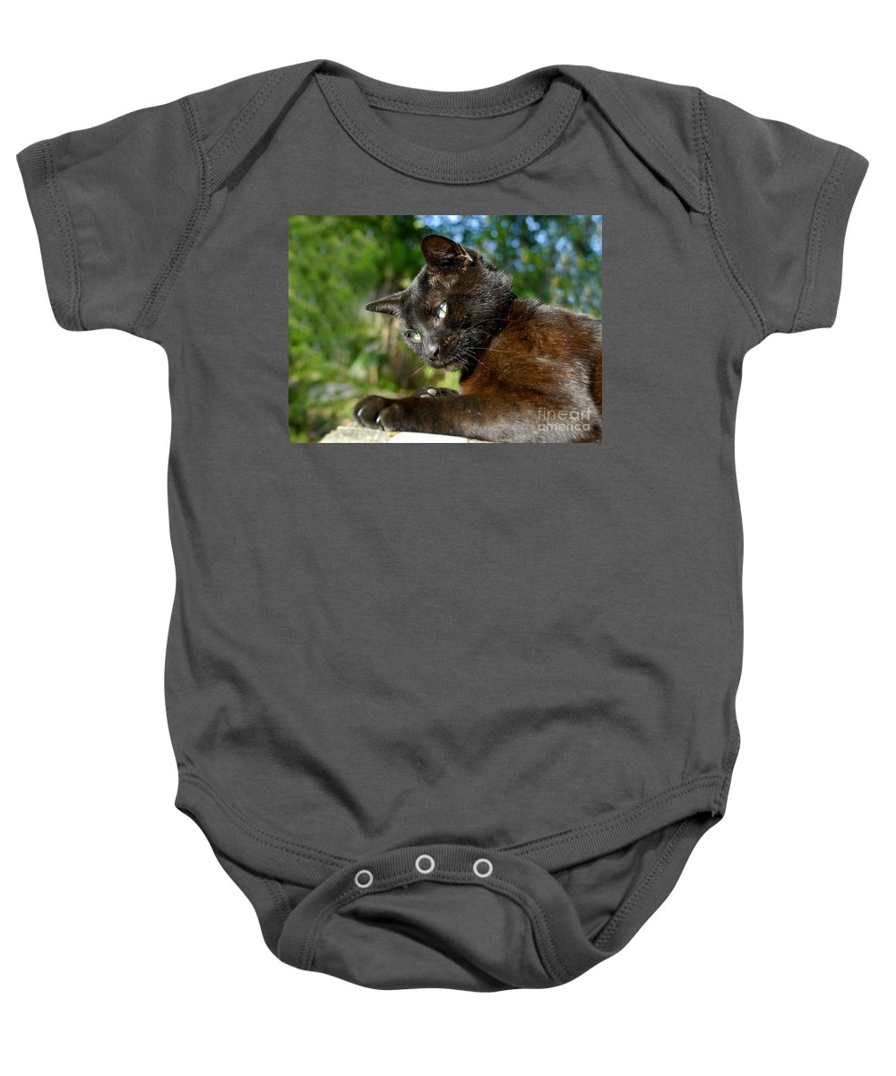 Cat Baby Onesie featuring the photograph Mr. Night by David Lee Thompson