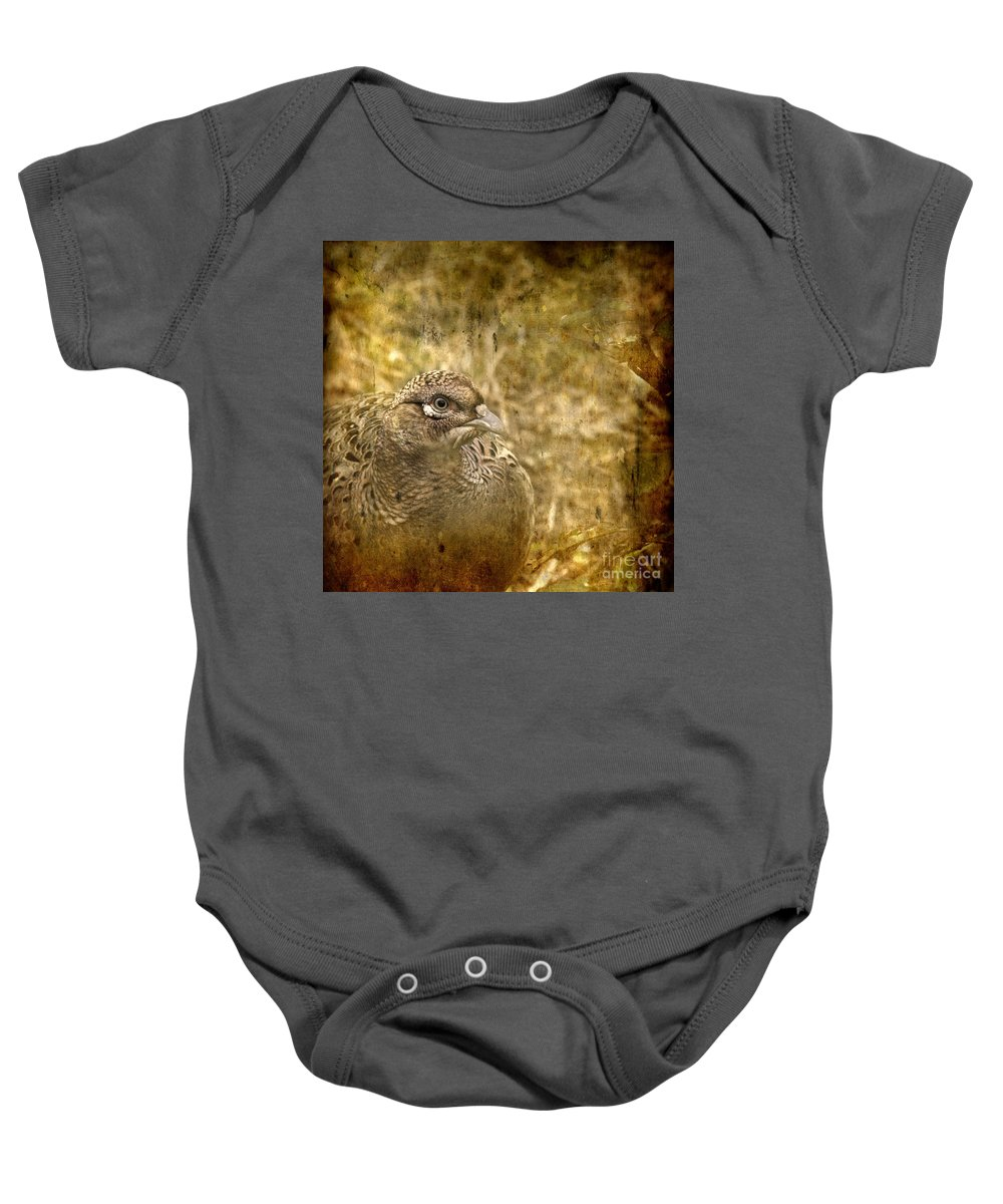 Pheasant Baby Onesie featuring the photograph Mrs Pheasant by Angel Ciesniarska