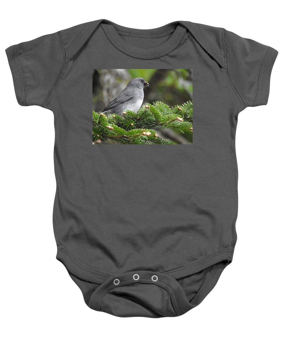 Mt Mitchell Baby Onesie featuring the photograph Mt Mitchell Junco by Danny Barrett