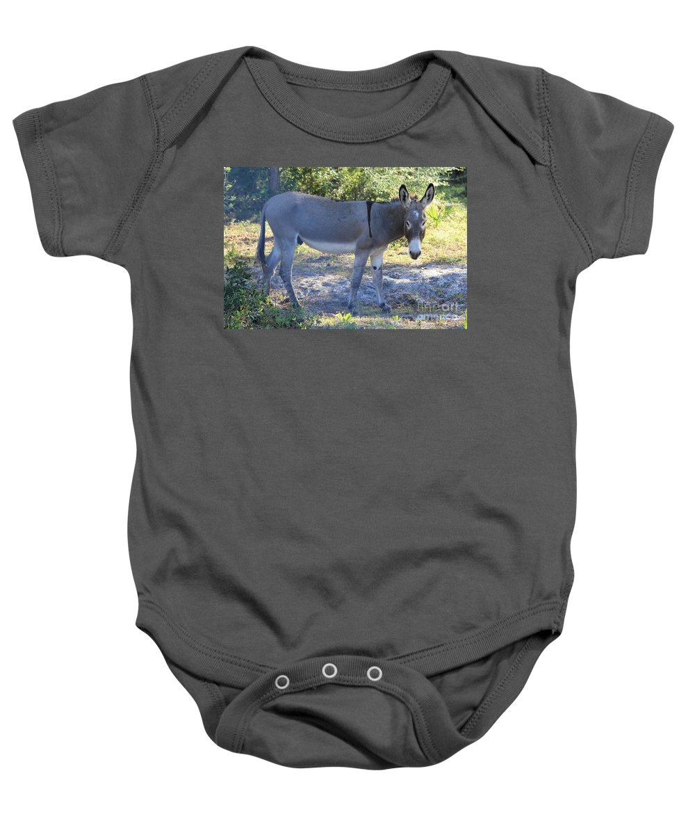 Mule Baby Onesie featuring the photograph Mule In The Pasture by Michelle Powell